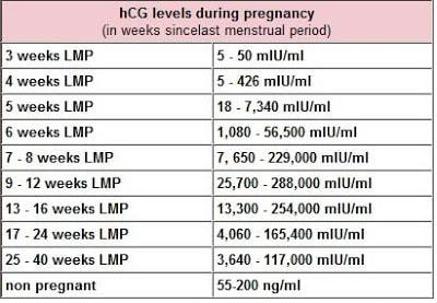 HCG Levels during pregnancy